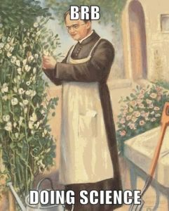 Gregor Mendel - BRB doing science