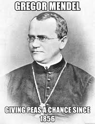 Gregor Mendel - Give Peas a Chance