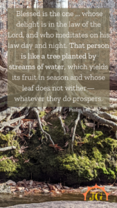 Psalm 1:1a, 2-3: Blessed is the one... whose delight is in the law of the Lord, and who meditates on his law day and night. That person is like a tree planted by streams of water, which yields its fruit in season and whose leaf does not wither - whatever they do prospers.