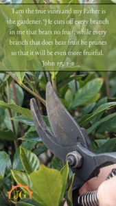 John 15:1-2: I am the true vine and my Father is the gardener. He cuts off every branch in me that bears no fruit, while every branch that does bear fruit he prunes so that it will be even more fruitful.