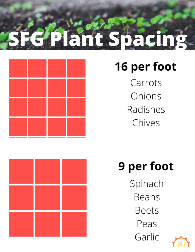SFG plant spacing - 16 per foot for carrots, onions, radishes, and chives. 9 per foot for spinach, beans, beets, peas, and garlic.