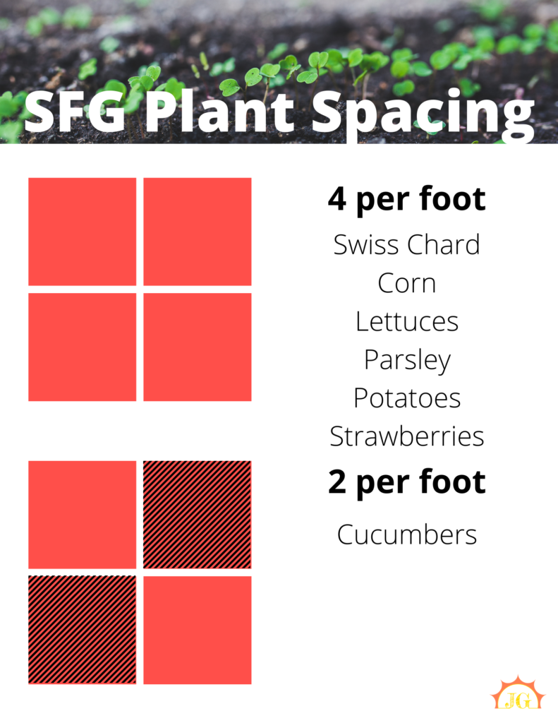 SFG plant spacing - 4 per foot for swiss chard, corn, lettuces, parsley, potatoes, strawberries. 2 per foot for cucumbers.