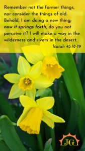 """Isaiah 43:18-19: """"Remember not the former things,     nor consider the things of old. 19 Behold, I am doing a new thing;     now it springs forth, do you not perceive it? I will make a way in the wilderness     and rivers in the desert."""