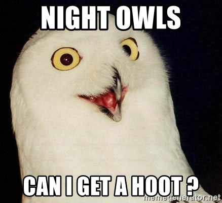 night-owls-can-i-get-a-hoot-